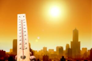 Responding to an Extreme Heat Advisory