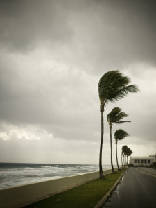 With a hurricane on the horizon, make sure you have the proper insurance