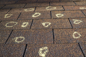 Should I replace my roof after a hail storm? Mynor E. Rodriguez